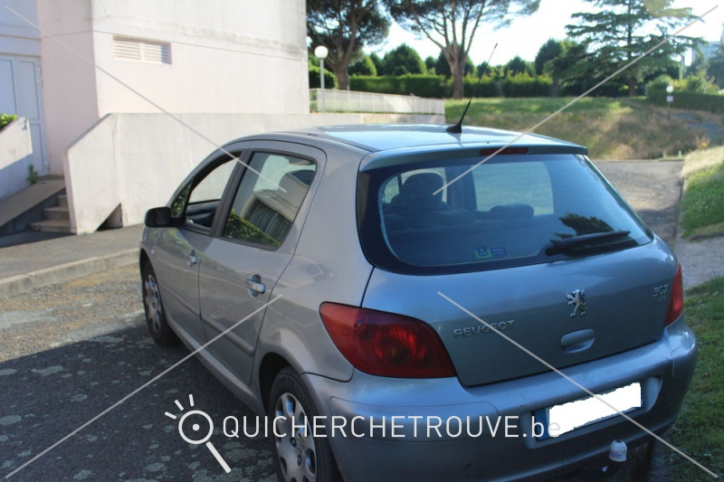 a vendre peugeot 307 1 6 hdi 110 xt petites annonces autos france. Black Bedroom Furniture Sets. Home Design Ideas